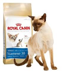 Royal Canin Siamese 400гр, корм для Сиамских кошек