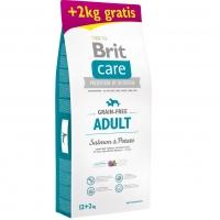Брит Карэ 12кг + 2кг. Лосось и Картофель для собак Мелких и Средних пород (Brit Care)