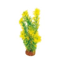 Амбулия 20см (желто-зеленый), растение пластиковое