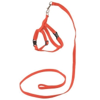"Комплект ECO ""Sport Classic"" Красный - поводок 1см х 120см+шлейка, обхват груди 30-45см, синтетика"