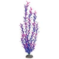 Людвигия фиолетовая 10см (Laguna)