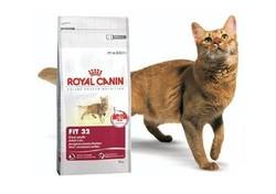 Royal Canin Fit 15кг корм для кошек, бывающих на улице