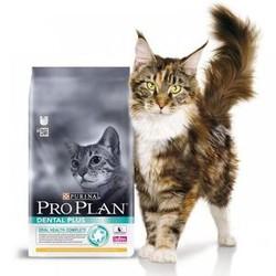 ПроПлан для кошек. Дентал плюс. 1,5кг