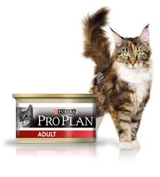 Pro Plan Adult с Курицей 85гр, паштет для кошек