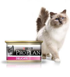 Pro Plan Delicate с Индейкой 85гр, паштет для кошек