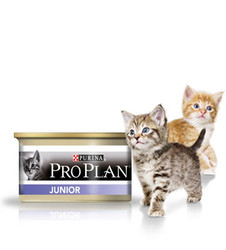 Pro Plan Kitten паштет для котят с Курицей 85гр