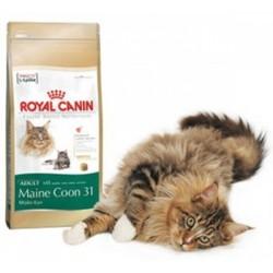 Royal Canin Maine Coon 31 корм для кошек породы Мейн Кун 4кг